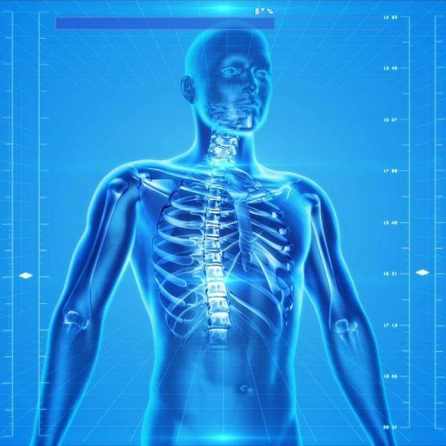 人体哪个器官或者部位最委屈?